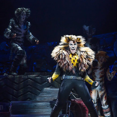 Cats The Movie Will Not Work – Why The Jellicle Ball Is Best Danced On Stage Instead Of The Screen