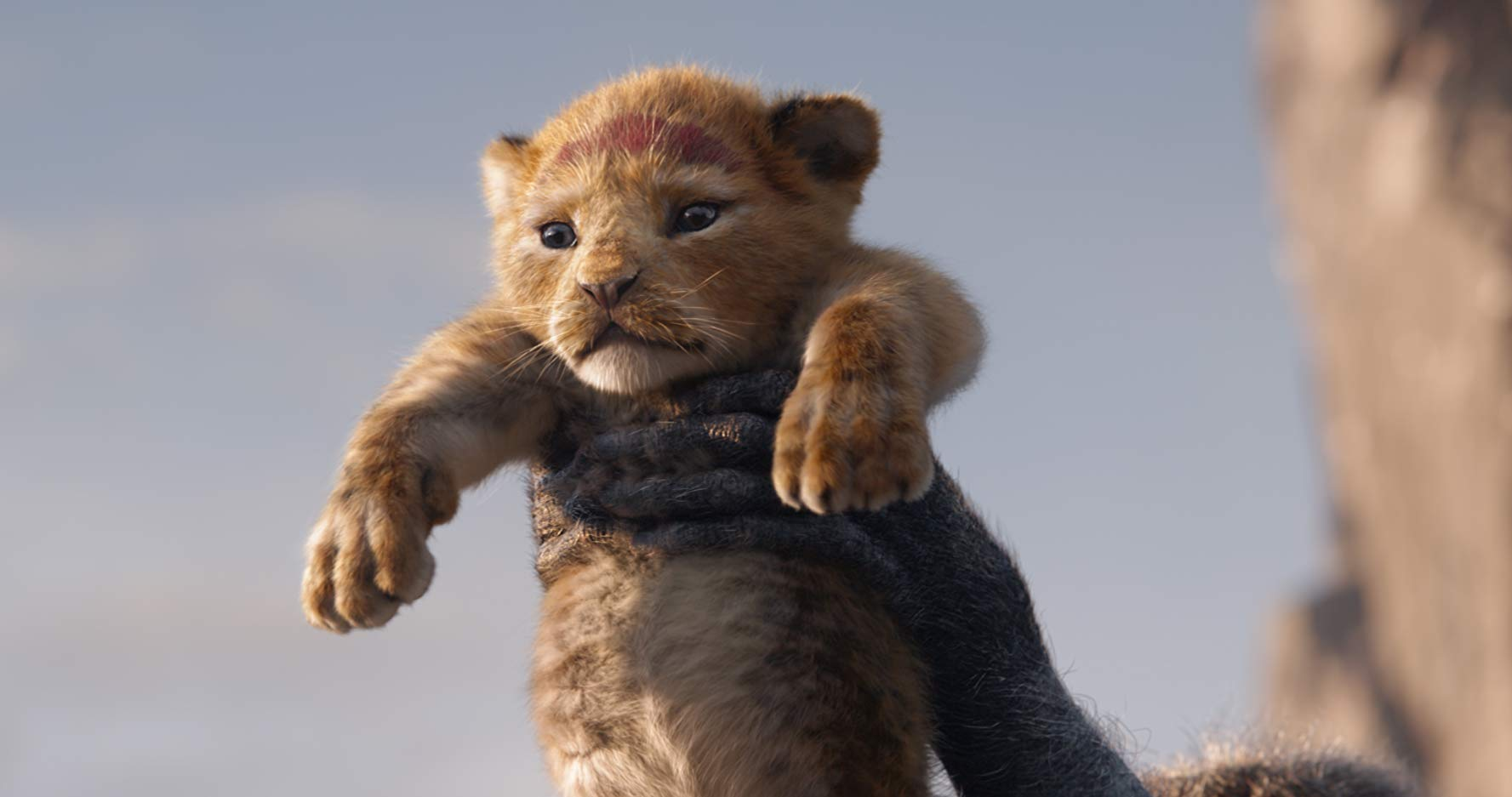 The Lion King Beyonce, Donald Glover, Seth Rogen, Chiwetel Ejiofor, James Earl Jones, John Oliver, Disney