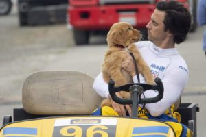 Hollywood Insider review The Art Of Racing In The Rain Milo Ventimiglia, Amanda Seyfried, Kevin Costner, Dog movies