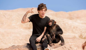 Hollywood Insider Eli The Chimp and Louis Tomlinson in One Direction Music Video with Harry Styles and Zayn Malik