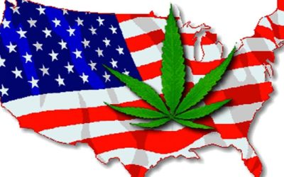 Video: Should Marijuana Be Legalized In All 50 States? Hear From Everyday People And Visitors In USA | Hollywood Insider's 'Messages From America' – Episode 10
