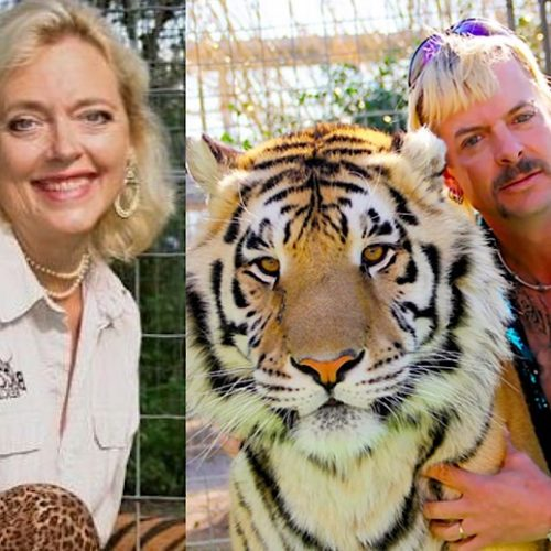 'Tiger King': Murder, Mayhem, and Madness - The Tales and Trials of Joe Exotic, Big Cats, Did Carole Baskin Do It?