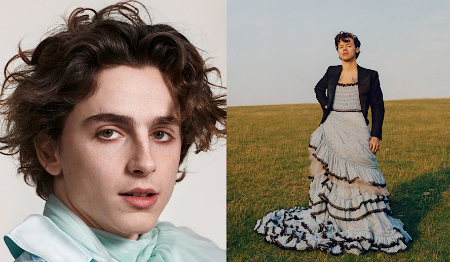 Hollywood Insider Timothee Chalamet and Harry Styles, Destroying Toxic Masculinity