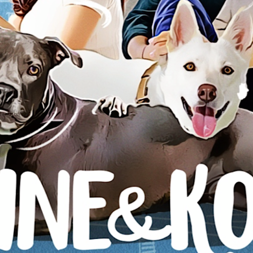 'June & Kopi': A Well-Intentioned Film For Any Fans of Family Pet Dramas and International Cinema