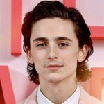 The Quiet Meteor That Is Timothée Chalamet: The Rise and Journey of the Superstar and Heir to Leonardo Dicaprio's Throne