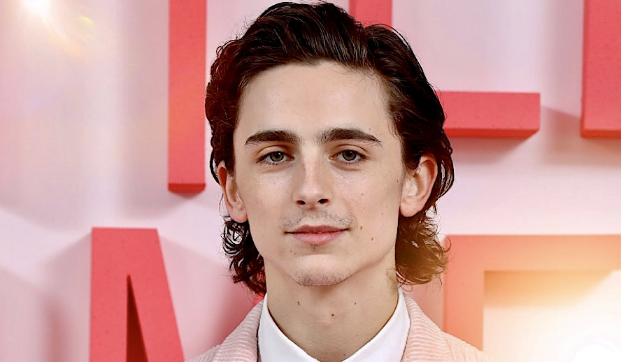 Hollywood Insider Timothée Chalamet, Rise and Journey, Call Me By Your Name
