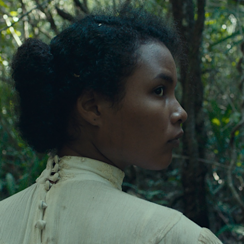 Mexican Thriller 'Tragic Jungle' — Well Crafted Jungle Thrill