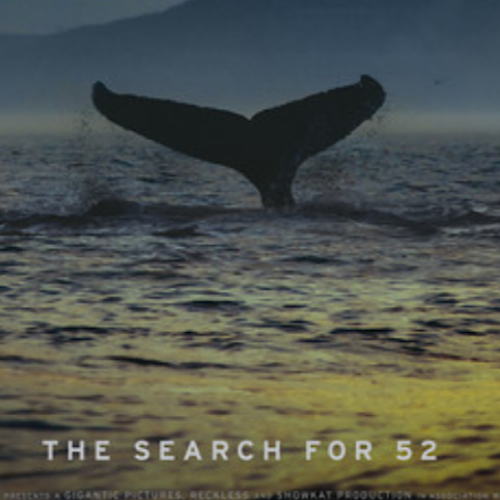 The Loneliest Whale on Earth: Produced By Leonardo DiCaprio - 'The Loneliest Whale: The Search for 52' Review