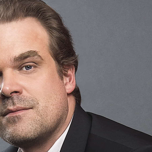 The Rise and Journey of David Harbour — A Walk Through the Filmography of the 'Stranger Things' Star